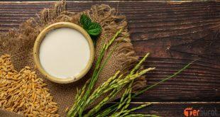 5 manfaat yang terkandung dalam susu beras dan cara membuatnya
