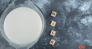 Pahami manfaat minum susu untuk daya tahan tubuh bagi lanjut usia